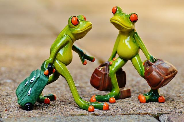 Frosch Koffer Lastminute