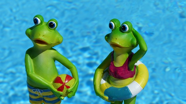 Frosch im Pool