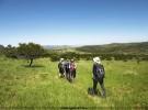 Wandern in Südafrika und Namibia – Savanne & Wüste