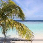 Urlaub auf den Malediven - Neuer Robinson Club Noonu