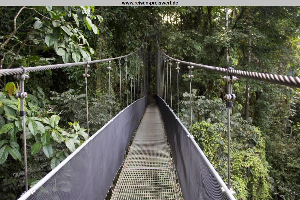 Hängebrücke in Costa Rica im Dschungel - Karibik