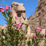 Karnak Tempel Luxor - www.reisen-preiswert.de