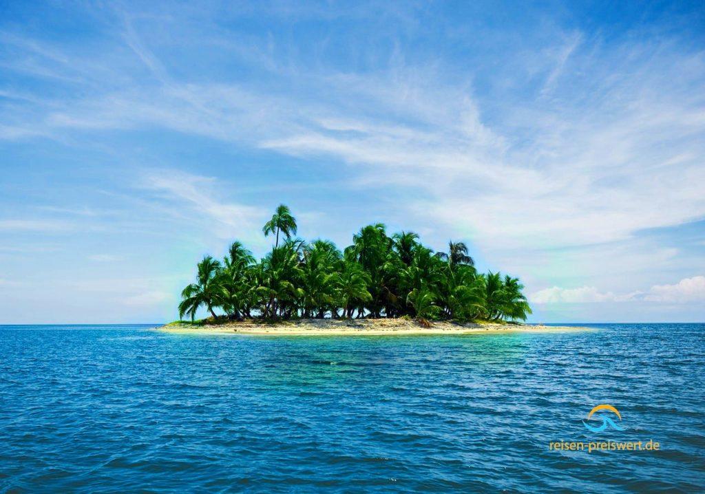Eine einsame Insel im Meer - Karibikinsel mit Palmen und Strand
