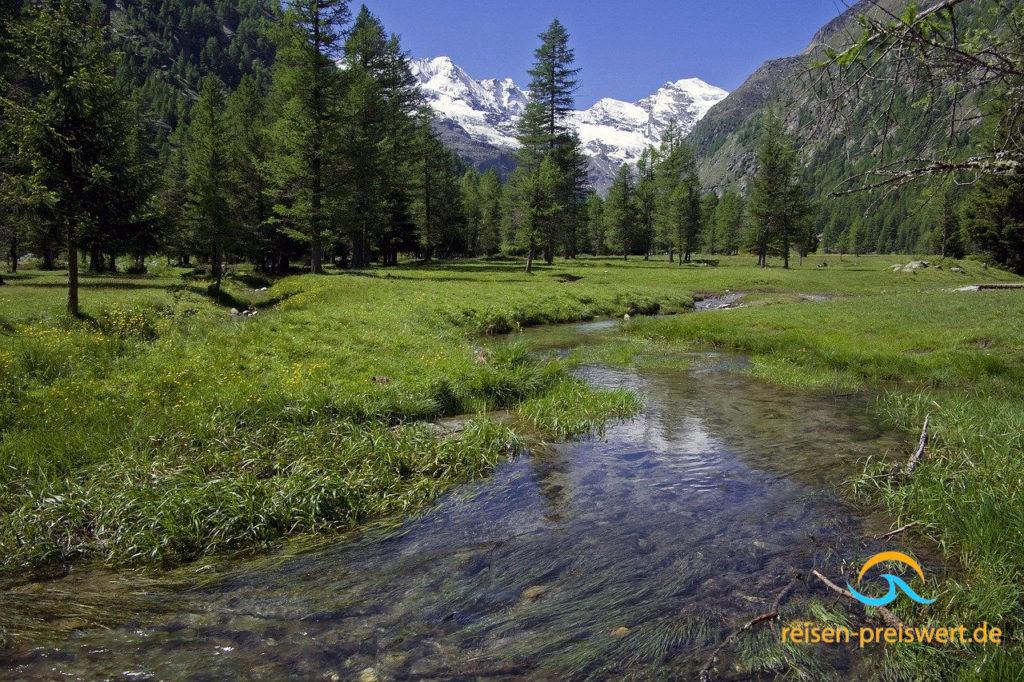 Fluß in der Natur des Nationalpark Gran Paradiso